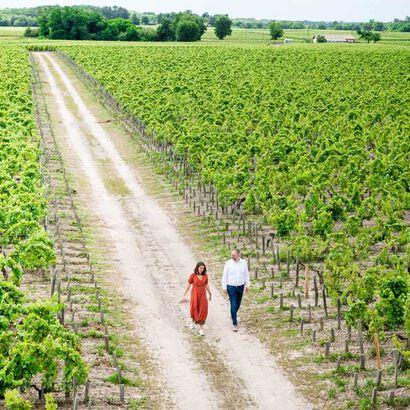 la grande épicerie de Paris - Vignes