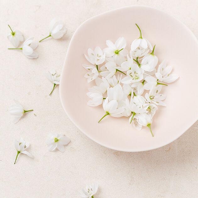 Les fleurs et la cuisine