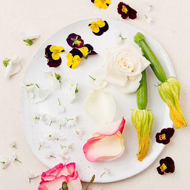 Beatriz Gonzales et les fleurs comestibles