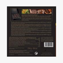 Coffret amandes et noisettes enrobées de chocolat noir (55% de cacao minimum, pur beurre de cacao) Valrhona