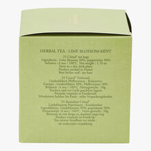 Linden Mint herbal infusion - Box of 25 teabags Dammann Frères