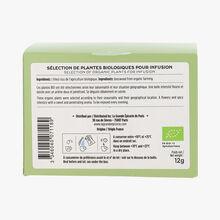 Organic lime tree herbal infusion 20 sachets La Grande Épicerie de Paris