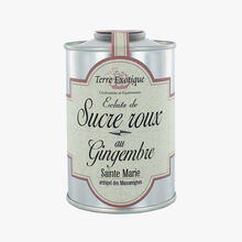Brown sugar with ginger Terre Exotique
