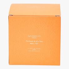 Rooibos parfumé Oriental - Boîte de 25 sachets Dammann Frères
