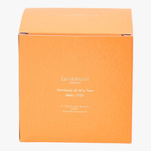 Oriental flavoured Rooibos - Box of 25 teabags Dammann Frères
