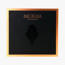 Sélection de 16 chocolats pralinés noir et lait Angelina
