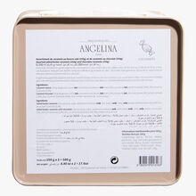 Plain and chocolate-coated salted butter caramels in a traditional Angelina tin, 500 g Angelina