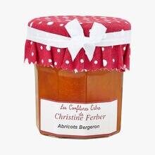 Bergeron apricot fruit mixture Christine Ferber