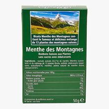 Mountain mint Ricola