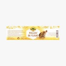 Pollen de Fleurs d'Espagne Culture Miel