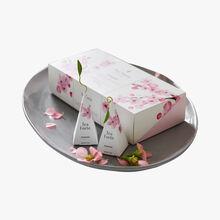 Coffret Hanami, thé vert aromatisé, 10 pyramides Tea Forte
