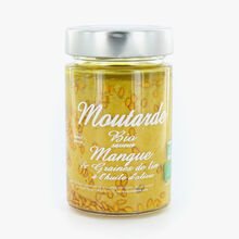 Linseed and mango-flavoured organic mustard with olive oil Savor & Sens