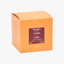 Rooibos parfumé Citrus - Boîte de 25 sachets Dammann Frères