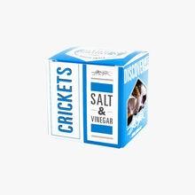 Le Grillon - salt & vinegar Jimini's