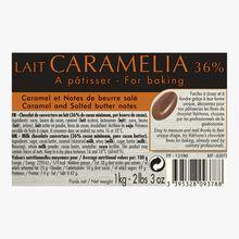 Caramelia milk chocolate for baking (36 % minimum cocoa, pure cocoa butter)  Valrhona