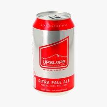 Citra Pale Ale Brasserie Uslope