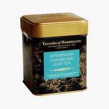 Darjeeling afternoon tea Taylor's of Harrogate
