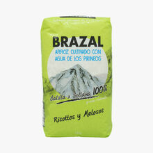 Balilla X Sollana, grano redondo y perlado Brazal