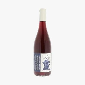Domaine Breton, AOC Bourgueuil, Avis de vin Fort 2017  Domaine Catherine et Pierre Breton