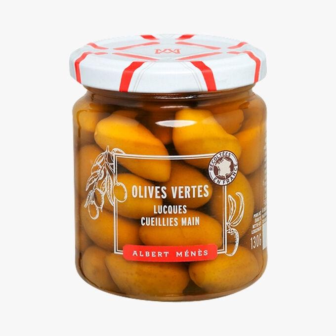 Olives vertes Lucques Albert Ménès