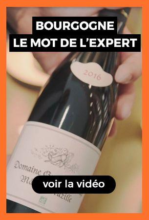 Vidéo Bourgogne
